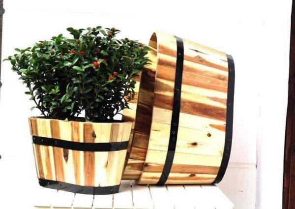 Chậu gỗ Oval trồng cây