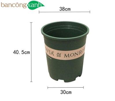 Chậu nhựa trồng cây Monrovia size 7