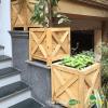 Chậu gỗ trồng cây cao cấp Famifarm Edge Box hình vuông ( EB555)