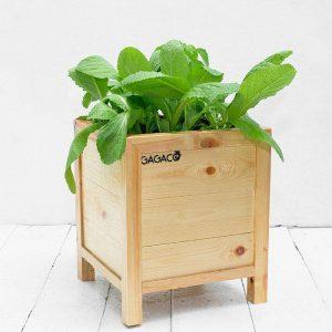 Chậu gỗ trồng cây-chậu gỗ trồng hoa cao cấp GG303035