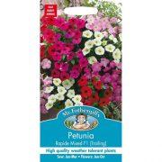 Hạt giống hoa dạ yến thảo Rapide (Mix)-