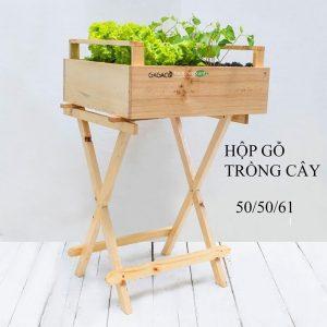 Kệ gỗ trồng cây cao cấp chân chéo GG505061
