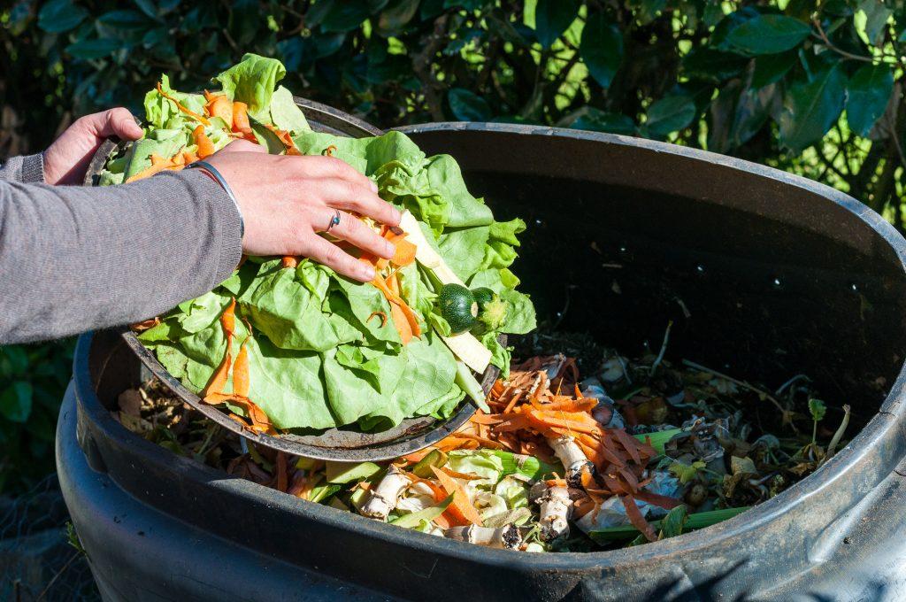 Một số nguyên tắc tự ủ phân bón tại nhà