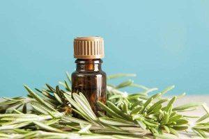 Những tác dụng tuyệt vời cho không gian sống và sức khoẻ của cây hương thảo-3