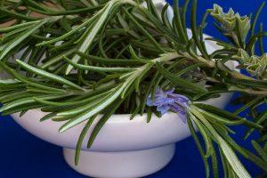 Những tác dụng tuyệt vời cho không gian sống và sức khoẻ của cây hương thảo-6
