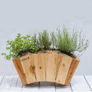 Hộp gỗ trồng cây dạng vòm GG603024