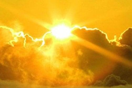 Sức nhiệt từ ánh sáng mặt trời sẽ đốt cháy cỏ dại