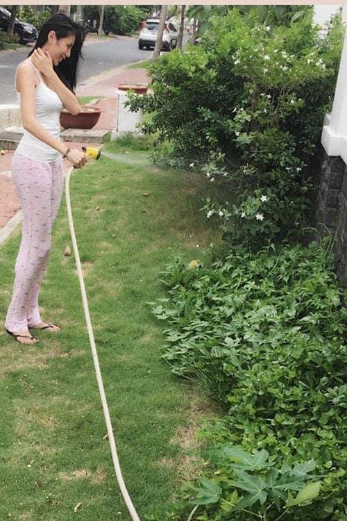 Vườn rau sạch thích mắt của vợ chồng Thủy Tiên
