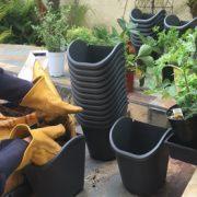 Bộ lẻ vườn tường Dig LivingWall cho cảnh quan