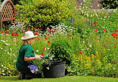 Bộ dụng cụ làm vườn