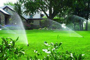 Tưới cảnh quan thảm cỏ cho sân vườn