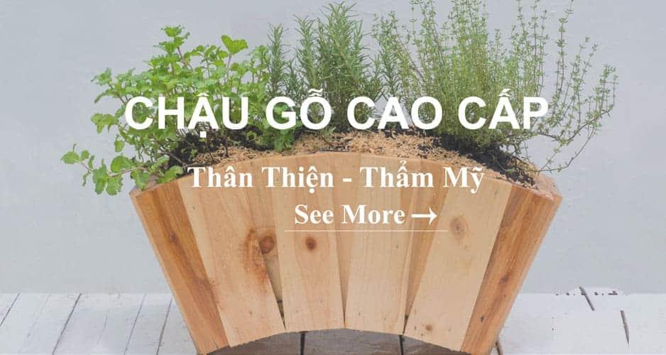 chậu gỗ cao cấp trồng cây