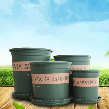 Chậu nhựa trồng cây Monrovia cao cấp 2