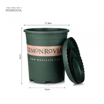 Chậu nhựa trồng cây Monrovia cao cấp size 5
