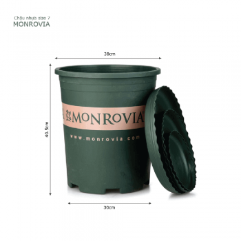 Chậu nhựa trồng cây Monrovia cao cấp size 7