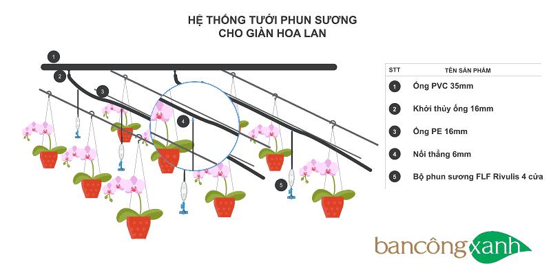 Hệ thống tưới phun sương cho giàn hoa lan