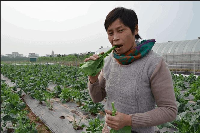 HÌnh ảnh chị Cuối tự tin ăn rau sạch do mình trồng