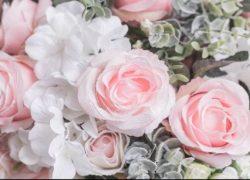 Hoa hồng là ngôn ngữ của tình yêu