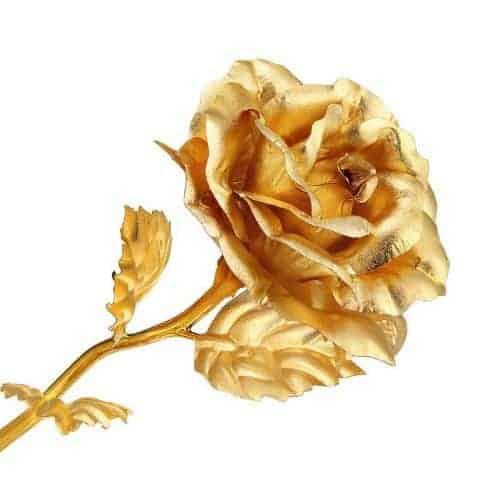 Trong thời đại của Victoria, ý nghĩa của hoa hồng vàng chính là sự ghen tuông, phản bội.