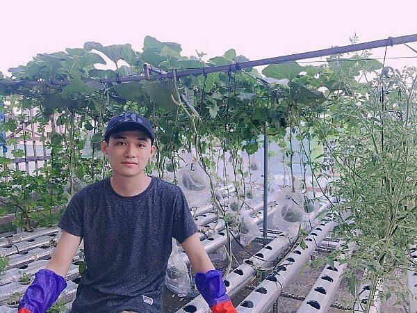 Vườn rau thủy canh của Quốc Thịnh