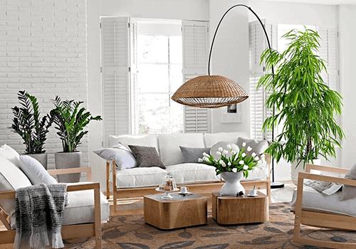 Các chậu cây được bố trí trong phòng khách tạo cảm giác tươi mơi, giàu sức sống