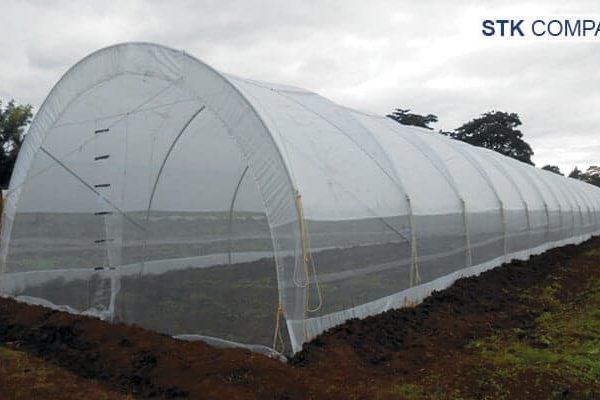Màng phủ nhà kính quy mô nhỏ Solarig Tunnel Kit STK: Compact