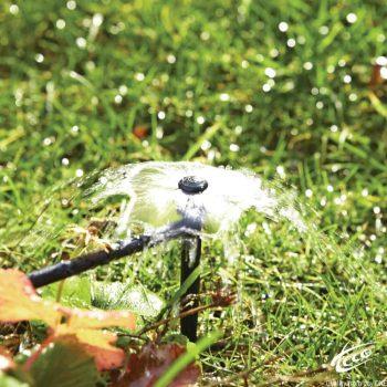 Đầu tưới bù áp Teco Mini Bubbla PC 360, cuối ống, chân 15cm