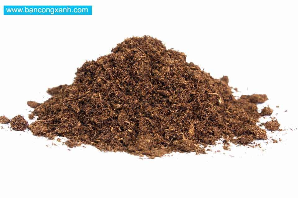 Giá thể trồng cây Rêu than bùn Peat moss