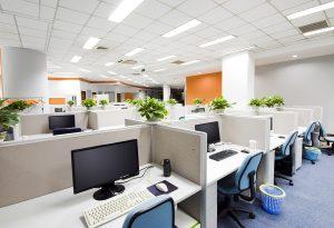 Cách sắp xếp cây cảnh văn phòng để bàn hợp phong thủy