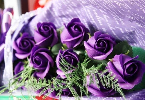 Ý nghĩa các loại hoa hồng – Hoa hồng tím