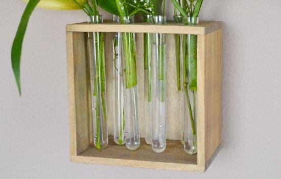 Những mẫu chậu hoa treo tường đẹp và dễ làm 10