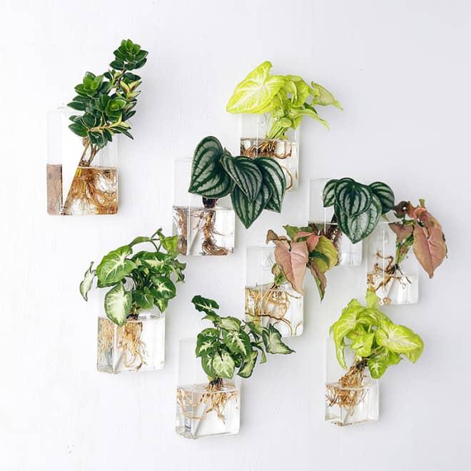 Những mẫu chậu hoa treo tường đẹp và dễ làm 13