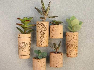 Những mẫu chậu hoa treo tường đẹp và dễ làm 24
