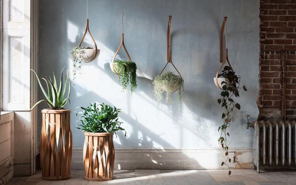 Những mẫu chậu hoa treo tường đẹp và dễ làm 28
