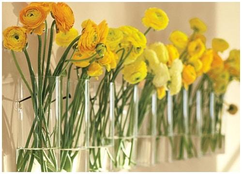 Những mẫu chậu hoa treo tường đẹp và dễ làm 9