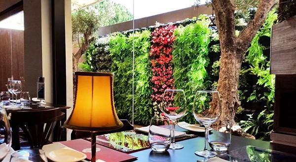Những mẫu thiết kế vườn tường đẹp nhất 2019 10