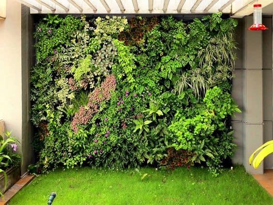 Những mẫu thiết kế vườn tường đẹp nhất 2019 14
