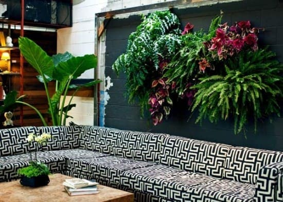 Những mẫu thiết kế vườn tường đẹp nhất 2019 15