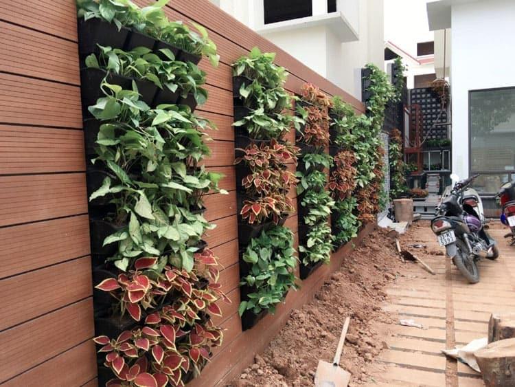 Những mẫu thiết kế vườn tường đẹp nhất 2019 30