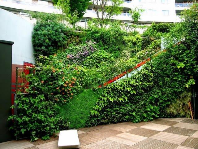 Những mẫu thiết kế vườn tường đẹp nhất 2019 7