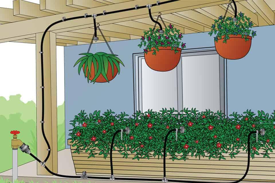 Lắp đặt hệ thống tưới nhỏ giọt tự động cho cây trồng ban công sân thượng 2