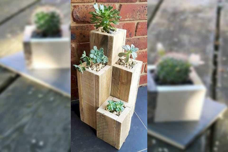 trồng hoa bằng chậu gỗ