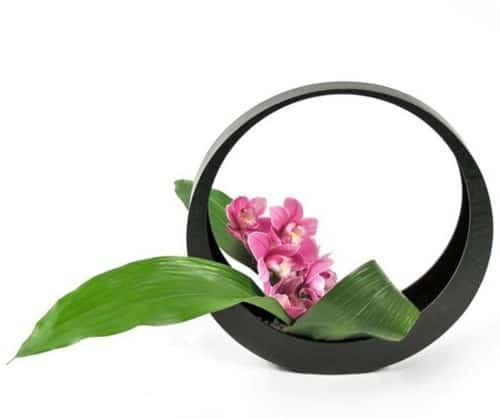 Cách cắm hoa lan hợp phong thủy