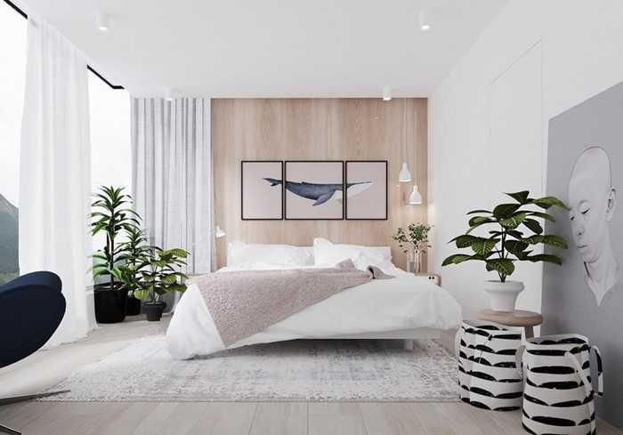 Sắp xếp cây cảnh trong nhà - Phòng ngủ