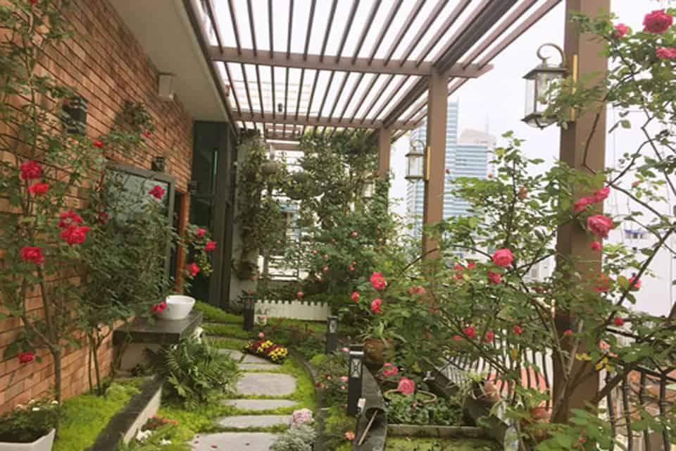 vườn cây trên sân thượng