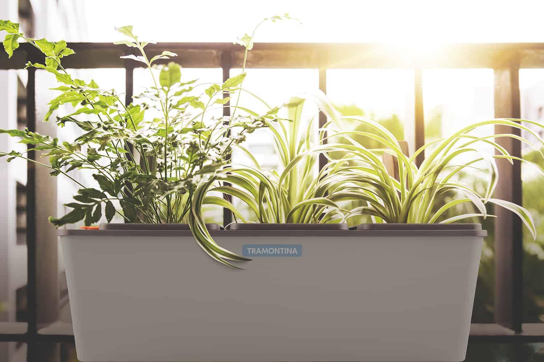 Chậu trồng cây tự tưới tramontina