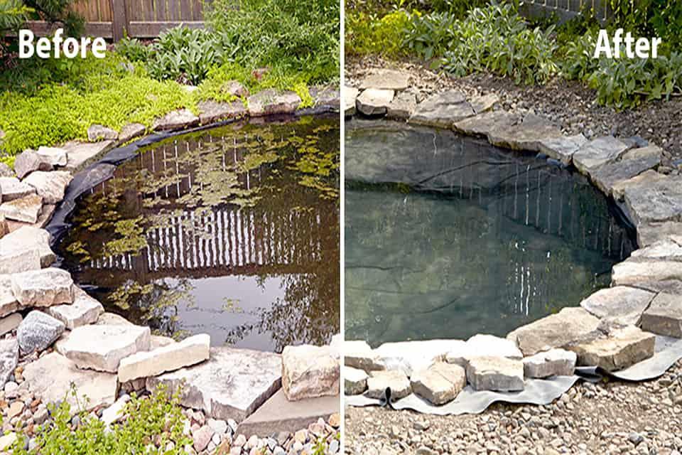 Kiểm soát bùn trong hồ cá