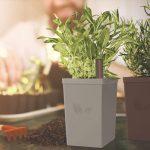 Chậu nhựa trồng cây tự tưới tramontina 1