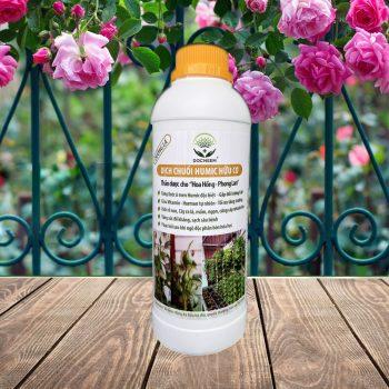 Chế phẩm dịch chuối humic hữu cơ 1