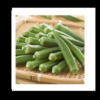 Hạt giống đậu bắp cao sản 1